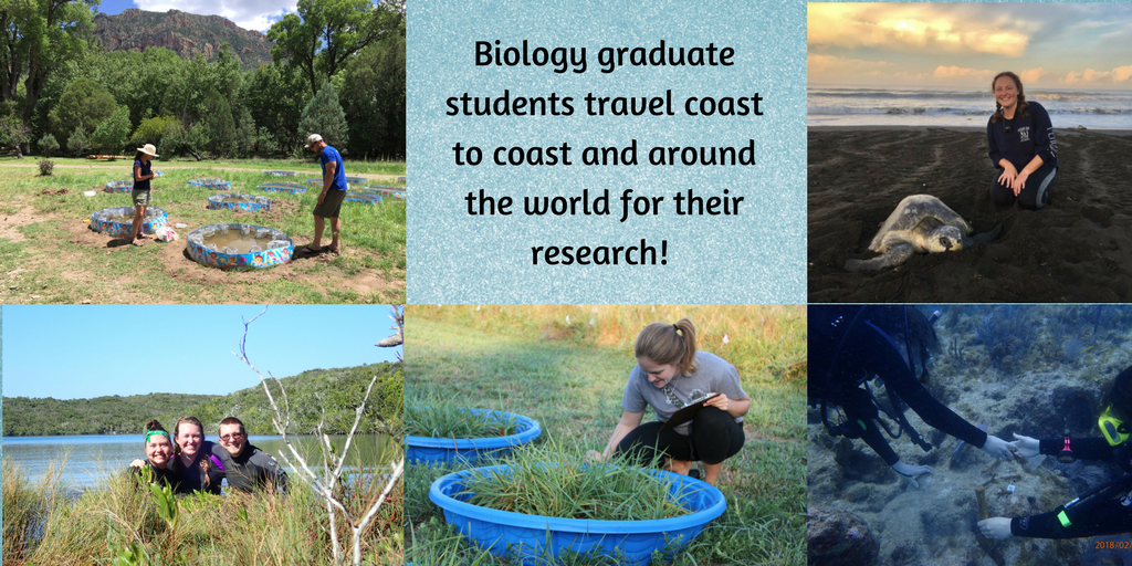 The biology department wants graduate students know just how much they are appreciated!